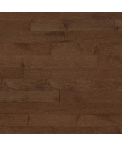 Hard Maple - Treebark